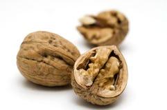 Walnut shell cracked Stock Photography