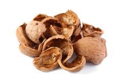 Walnut shell Stock Image