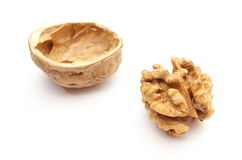 Walnut without shell and nutshell on white background Royalty Free Stock Photography