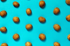 Free Walnut Shell On Blue Surface. Creative Concept Royalty Free Stock Photos - 105443188