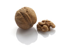 Walnut. In shell or peeled on a white background Royalty Free Stock Photography