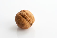 Walnut. In shell on a white background Royalty Free Stock Photos
