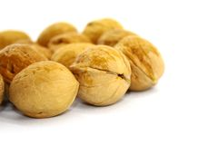 Walnut in shell on white background royalty free stock photos