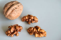 Walnut and shelled walnuts Stock Image