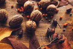 Walnut shells on table stock image