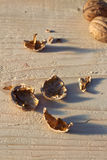 Walnut shells. On a wooden board Royalty Free Stock Photography