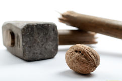 Walnut with Sledge Hammer Royalty Free Stock Photos