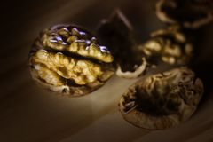 Walnut. Some walnuts on the table Royalty Free Stock Images