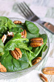 Walnut and spinach salad Royalty Free Stock Images