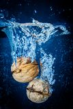 Walnut Splash Royalty Free Stock Photo