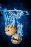 Walnut Splash. Fruit splash, blue background, lots of bubbles Royalty Free Stock Photo