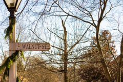 Walnut Street Sign Royalty Free Stock Photo