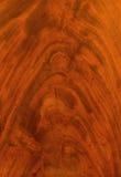 Walnut texture Royalty Free Stock Photography