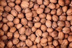Walnut texture for background Stock Photo