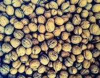 Walnut texture Stock Image
