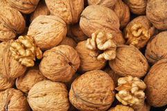Walnut texture Stock Photos