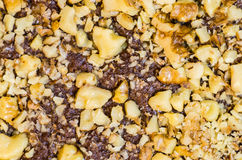 Walnut topping on chocolate brownies Stock Photography