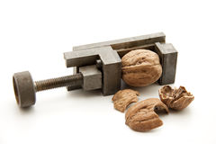 Walnut in the vise Stock Photography
