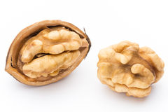 Walnut and walnut kernel isolated on the white background. Royalty Free Stock Photos