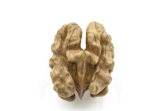 Walnut on the White Background Royalty Free Stock Image