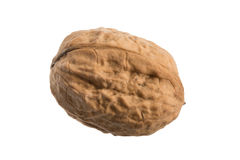 Walnut on white background. A walnut with shell on white background Royalty Free Stock Photography