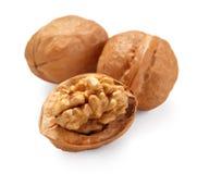 Walnut. The walnut on white background stock image
