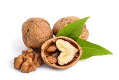 Walnut. On white background stock photos