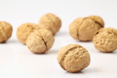 Walnut. The white background of walnut Royalty Free Stock Images