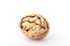 Walnut. The white background of walnut Royalty Free Stock Photography