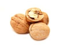 Walnut on white background Stock Photography