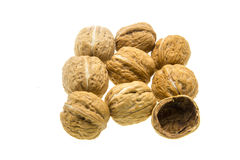 Walnut on a white background Stock Images