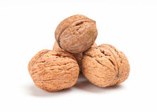 Walnut on white background Stock Image