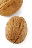 Walnut on white background Stock Images