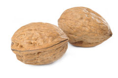 Walnut on white background Royalty Free Stock Image