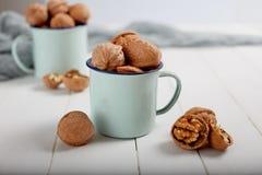 Walnuts  on white wood   background Royalty Free Stock Photo