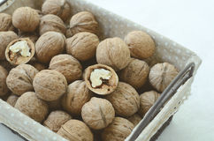 Walnut in wire basket Royalty Free Stock Photo