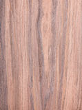 Walnut, wood grain, natural rural tree background Royalty Free Stock Images