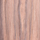 Walnut, wood grain Royalty Free Stock Image