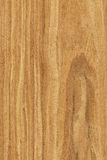 Walnut (wood texture). Texture of walnut (high-detailed wood texture series royalty free stock photography