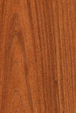 Walnut (wood texture). Texture of walnut (high-detailed wood texture series stock photo