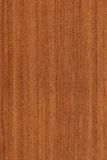 Walnut (wood texture) Stock Photo
