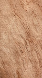 Walnut wood texture Royalty Free Stock Image