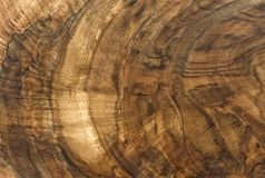 Walnut wood texture with natural pattern Stock Photos