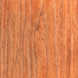 Walnut wooden texture, wood grain Stock Image