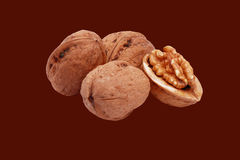Walnut2 Foto de Stock