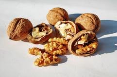Free Walnuts Royalty Free Stock Photos - 103655108