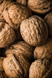 Walnuts. Series of organic and fresh walnuts royalty free stock image