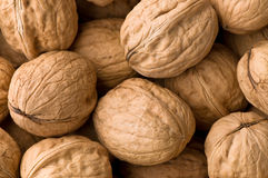 Walnuts. Many wall nuts making a background Royalty Free Stock Images