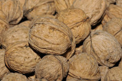 Walnuts. In basket close-up stock image