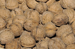 Walnuts. In basket close-up stock photo